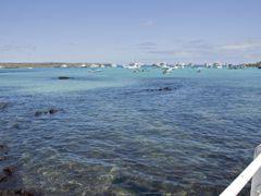 Croisières Puerto Ayora