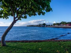 Croisières Lahaina, Maui