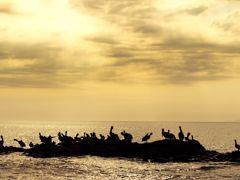 Cruceros Puntarenas