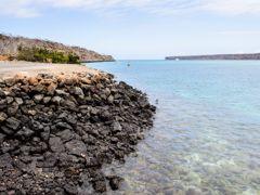 Crociere Baltra, Galapagos